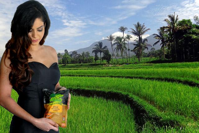 """Suwandel Traditional Sri Lankan Rice – for """"Glowing Skin"""""""