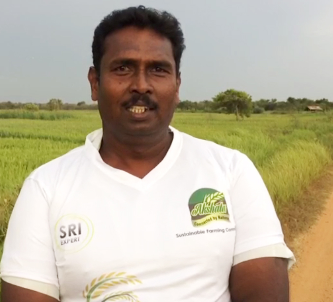 Akshata Traditional Rice cultivation is the best decision of my life